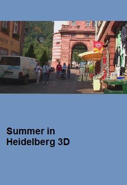 summer in Heidelberg 3d