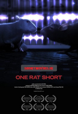 دانلود انیمیشن کوتاه One Rat Short