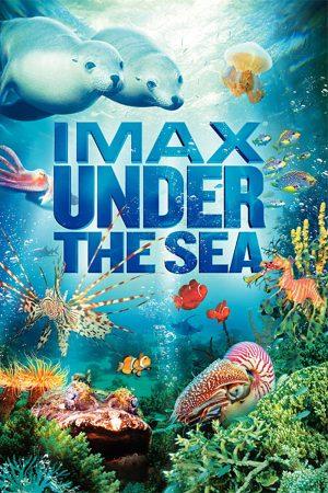 دانلود مستند کوتاه سه بعدی Under the Sea