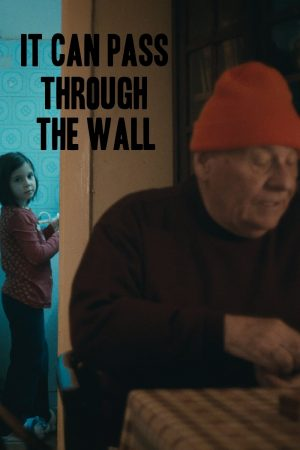 دانلود فیلم کوتاه It Can Pass Through the Wall
