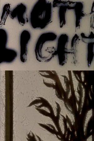 دانلود فیلم کوتاه Mothlight