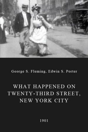 دانلود فیلم کوتاه What Happened on Twenty-Third Street, New York City