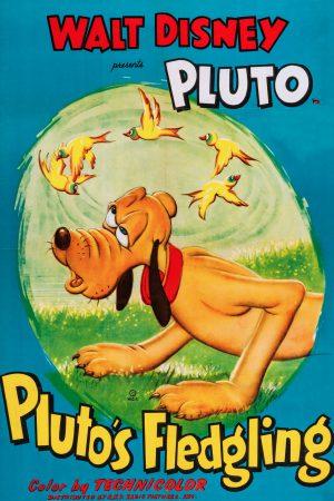 دانلود انیمیشن کوتاه Pluto's Fledgling