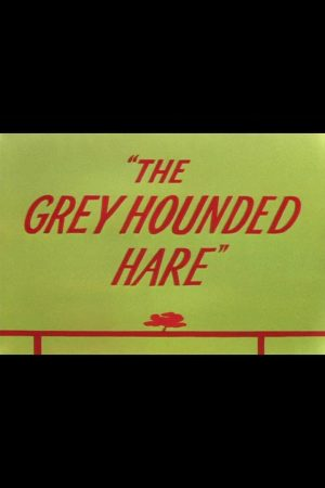 دانلود انیمیشن کوتاه The Grey Hounded Hare