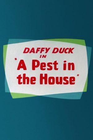 دانلود انیمیشن کوتاه A Pest in the House