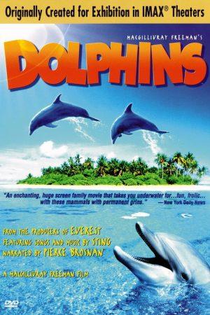 دانلود مستند کوتاه Dolphins