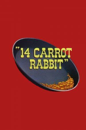 دانلود انیمیشن کوتاه ۱۴Carrot Rabbit