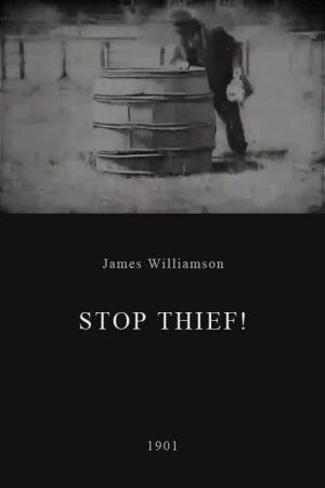 دانلود فیلم کوتاه Stop Thief