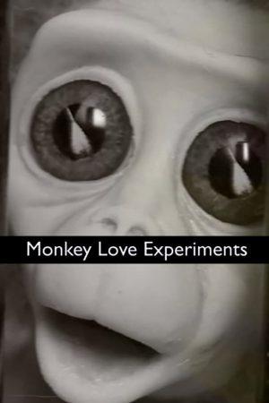 انیمیشن کوتاه Monkey Love Experiments