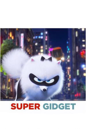 انیمیشن کوتاه Super Gidget